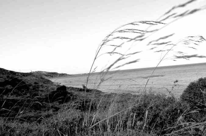 il vento d'icaria bw