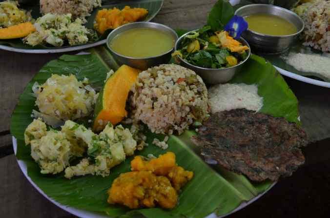 cibo krishna