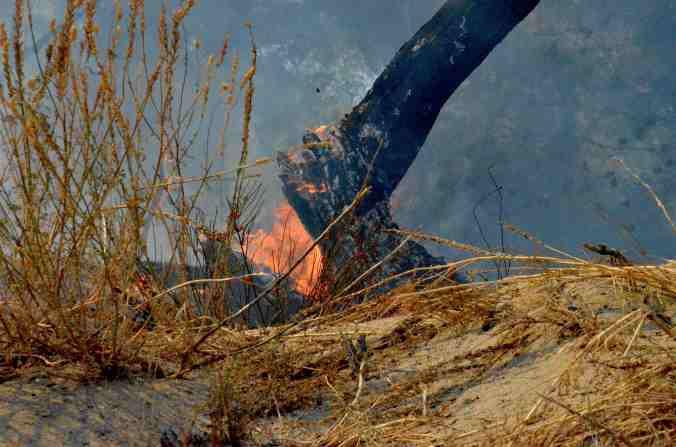 incendio fuoco